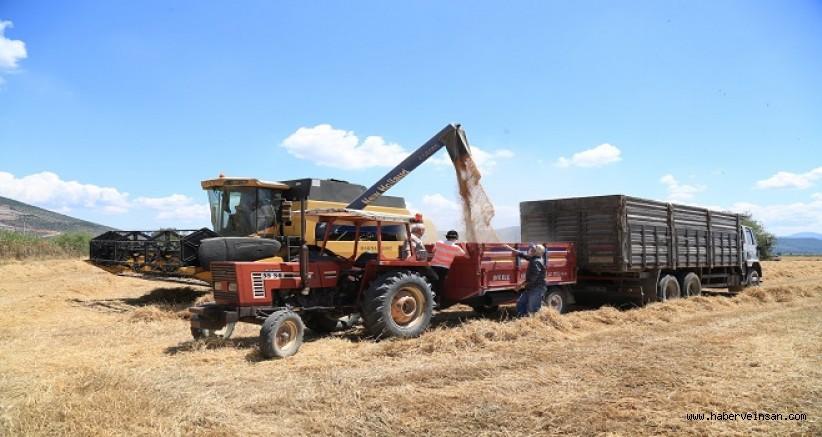 Buğday ve Arpa Hasadında Tarımsal Danışmanlık Farkı