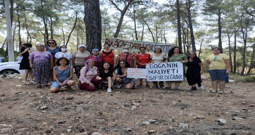 İkizköy-Akbelen Ormanı Bilirkişi Hâkimi Yüksel, Hâkimler ve Savcılar Kuruluna Şikâyet Edildi